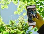Digitális kalandok az Agórában