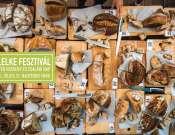 Kenyérlelke Fesztivál Debrecen