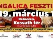 X. Mangalica Fesztivál