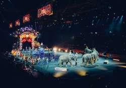 Cirkuszjegyet kap minden kitűnő tanulmányi eredményt elérő általános iskolás diák