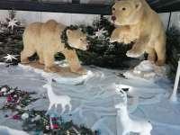 Jegesmedvék és adománygyűjtőpont a kirakatban