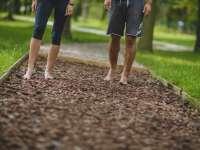 Mezítlábas parkok, amiket mindenképp ki kell próbálnunk a családdal