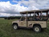 Hortobágyi programlehetőségek és Hortobágyi Nemzeti Park Látogatóközpont