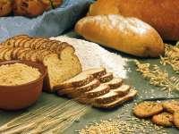 Amikor a mindennapi kenyerünk ellenséggé válik – Negyedik rész