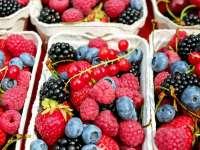 """A fruktóz-intoleranciáról """"aszalt"""" formában"""
