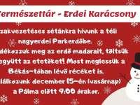 Természettár-Erdei Karácsony