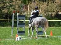 I.Kamilla kupa- Amatőr lovasverseny